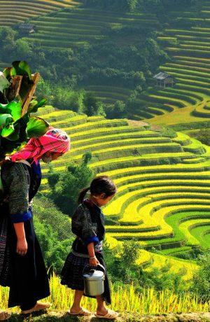 Hà Nội-Lào Cai-Sapa, Thứ 7 hàng tuần