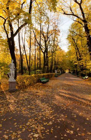 Moscow – Saint Petersburg. Hành trình Về nguồn – thăm lại mùa thu nước Nga