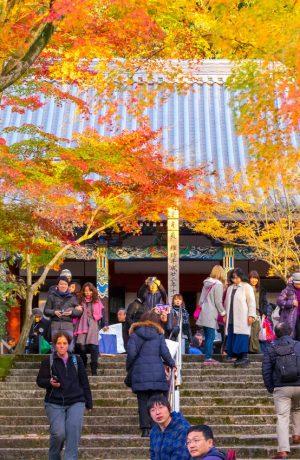 TẾT ÂM LỊCH NHẬT BẢN                     OSAKA-KYOTO-KOBE-NAGOYA-YAMANASHI-TOKYO (6N5D)