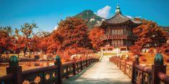 TẾT ÂM LỊCH HÀN QUỐC BAY T'WAY : SEOUL – NAMI – LOTTE WORLD (4N4D)